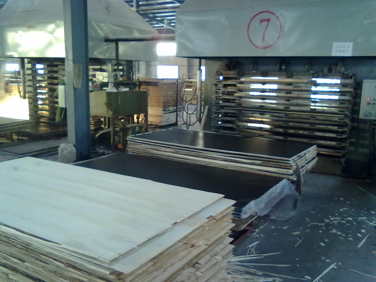 Film faced plywood processing